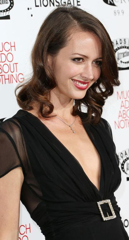 Amy Acker, Height, Weight, Bra Size, Age, Measurements