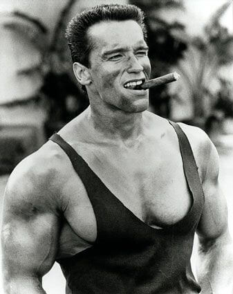 Arnold Schwarzenegger, Height, Weight, Age, Body Fat Percentage