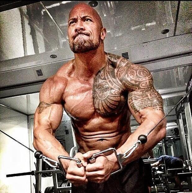 Dwayne Johnson, Height, Weight, Age, Body Fat Percentage