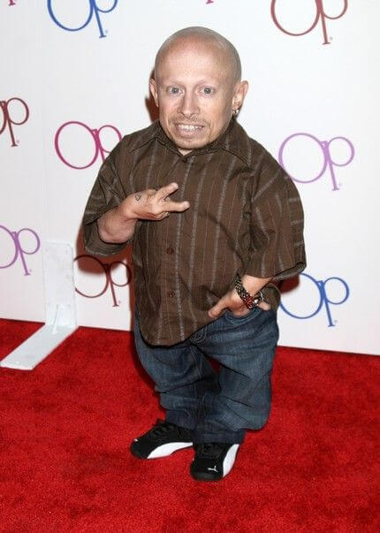 Verne Troyer, Height, Weight