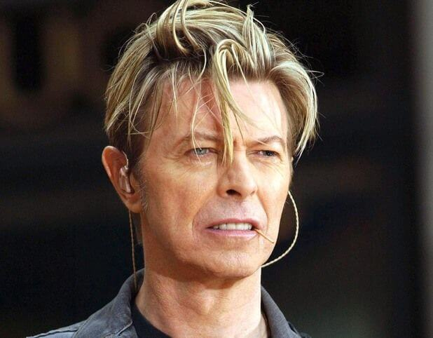 David Bowie - Height Weight Body Fat